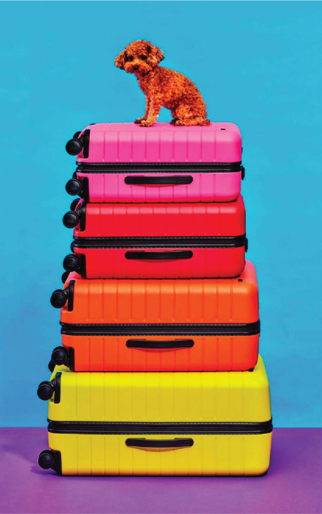 A stack of colorful suite cases.